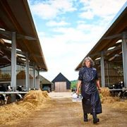 Female vet walking in cattle farm