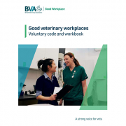 A vet and veterinary nurse chatting in a practice